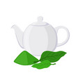 green tea - asian drink teapot matcha tea leaf vector image