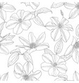seamless pattern with clematis flowers vector image vector image
