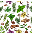 spices herbs and food seasonings seamless pattern vector image