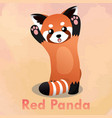 standing cute red panda vector image