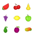 Different kinds of fruit icons set cartoon style vector image vector image