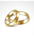 Gold Wedding Rings Isolated vector image vector image