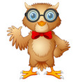 hipster owl in glasses and bow tie vector image vector image
