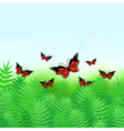 Natural background with butterflies vector image vector image