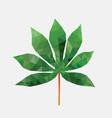 polygonal cassava leaf vector image