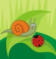 snail with ladybug vector image vector image