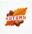 autumn emblem with an inscription red and yellow vector image