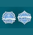christmas sign of blue color vector image vector image
