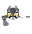 curious funny kitten climbs barrier vector image vector image
