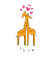 cute of giraffes in love vector image vector image