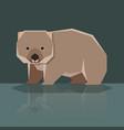 flat design wombat vector image vector image