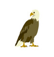 flat icons on theme of andorra eagle vector image vector image