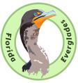 florida everglades cormorant logo - detailed vector image vector image