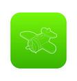toy plane icon green vector image vector image