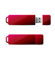 red usb flash drive vector image
