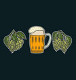 beer glass mug with hop vector image