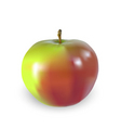 big apple vector image vector image