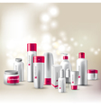 cosmetics package vector image vector image