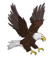 Eagle 005 vector image vector image