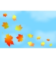 Frame of autumn leaves against the sky vector image vector image