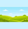 green lush lawn bushes shrubs summer landscape vector image vector image