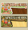 layouts for spices and herbs vector image