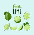 set of whole and sliced limes with lettering abaw vector image vector image