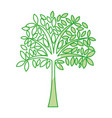shadow tree cartoon vector image vector image