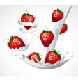 strawberries and milk splash vector image vector image