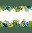 exotic tropical leaves top bottom border frame vector image vector image