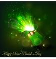 Green firework in leprechaun hat vector image