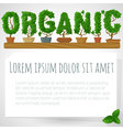 green fresh houseplant organic mock up vector image