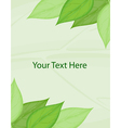 Green template vector image vector image
