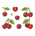 image cherries vector image vector image