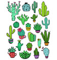 set colorful cactus icons vector image