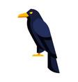 stylized raven image of wild bird vector image