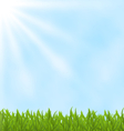 Summer background with green field and sky vector image vector image