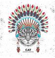 hipster animal cat with indian feather headdress vector image