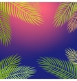 Palm trees silhouette background vector image vector image