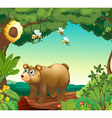 A bear with three bees inside the forest vector image vector image