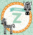 ABC animals Z is zebra Childrens english alphabet vector image
