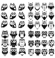 black and white owl and owlet se vector image