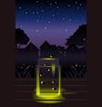 fireflies in the jar vector image vector image