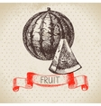 Hand drawn sketch fruit watermelon Eco food vector image vector image