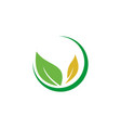 nature beauty business logo vector image vector image