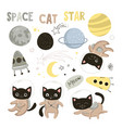 set elements with cute cats astronauts in vector image