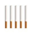 Set of Cigarettes Isolated on White vector image vector image