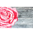 wooden texture with watercolor rose vector image vector image