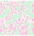 colored orchids pattern vector image