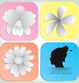 beautiful flowers design for spa background vector image